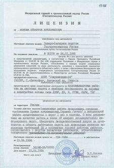 Лицензия 1995 ПН